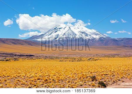 Snow peak mountains in the desert San Pedro de Atacama Chile South America. Puna grassland in the Chilean Altiplano desert.