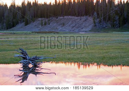 Sunrise Dawn over Pelican Creek in Yellowstone National Park in Wyoming U S A