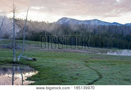 Dawn over Bison trail in Yellowstone National Park in Wyoming USA