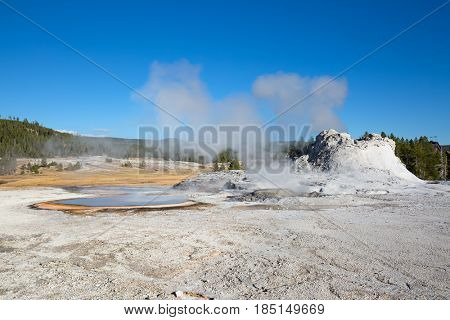 Castle geyser eruption in the Yellowstone national park, USA