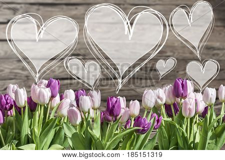 Bouquet of white and pink tulips and heart frames with words textspace copyspace