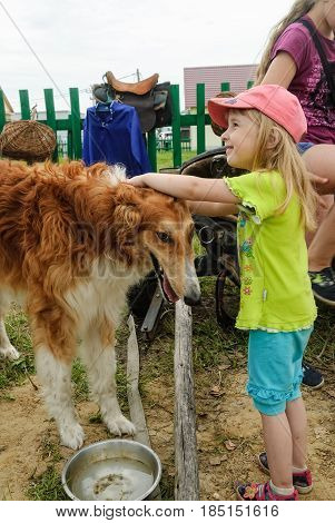 Tyumen Russia - June 24 2016: The 5th open championship of Russia on a plowed land. Cute child plays with dog in cossack cultural center