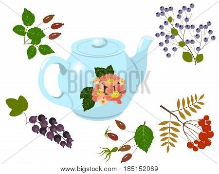 Blue teapot with flower ornament and berries of wild rose, currants, mountain ash and bird cherry, Isolated on white background, vector illustration