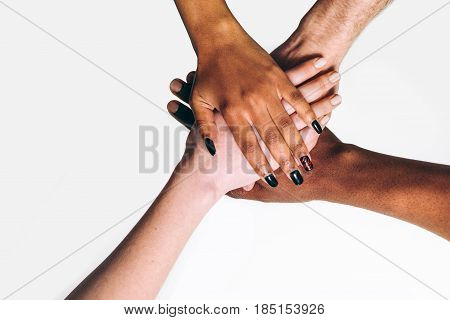 Black and white hands put together on white background . International friendship and business, unity, togetherness , race equality, help concept.