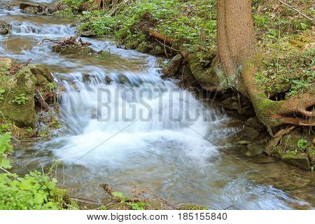 clean wild brook flowing in spring, Beskydy mountains, Czech Republic