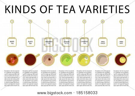 Different kinds of black, green or herbal tea top view banner. Vector illustration eps 10