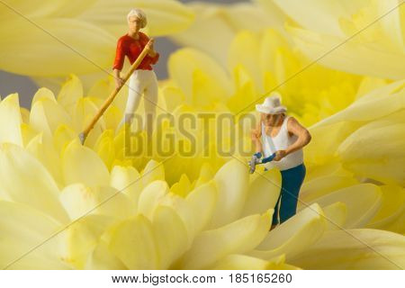 Miniature people: People are gardening in a field of yellow flowers