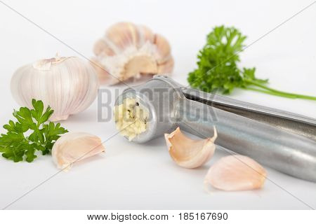 Garlic bulb and garlic cloves with garlic press on white background