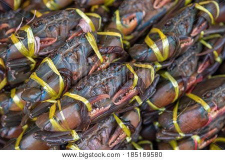 Fresh Raw Crab At Seafood Market