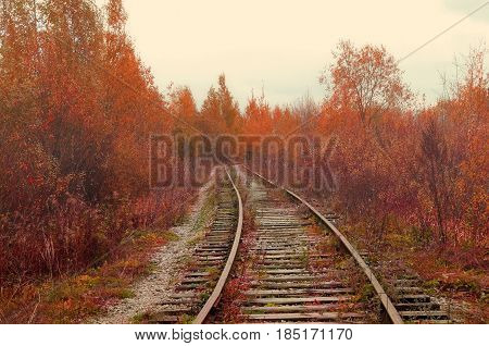 Industrial foggy autumn landscape - old abandoned railway receding into the distance in the autumn forest. Autumn industrial background with abandoned railway among autumn trees. Colorful autumn nature in cloudy weather