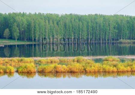Spring forest landscape - forest with green spring trees and river from height  - soft focus applied. Aerial view of spring nature landscape - spring forest near the river. Natural spring background with forest trees and spring flooded river in cloudy day