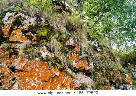 Mountain nature of Ustinovskii Canyon in Southern Urals Russia - summer mountain forest landscape. Closeup of nature details in the mountain canyon in summer day.Moss on the mountain stones in the mountain forest canyon