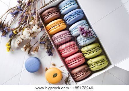 Multicolored French Macaroons