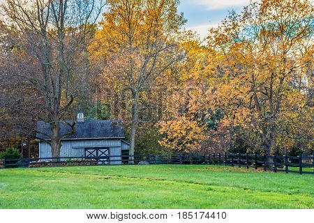 A rural barn and golden foliage in this rural scene in Central New Jersey.