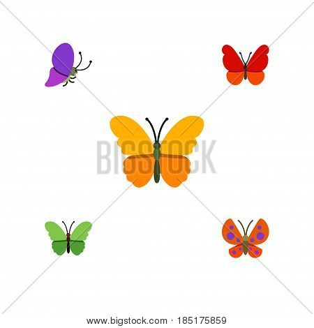 Flat Monarch Set Of Moth, Milkweed, Monarch And Other Vector Objects. Also Includes Butterfly, Moth, Milkweed Elements.