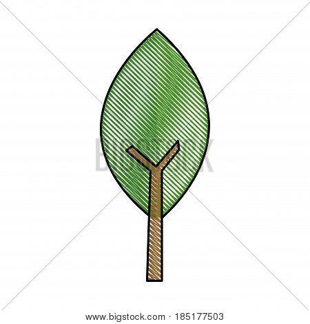 drawing leave natural stem green image vector illustration