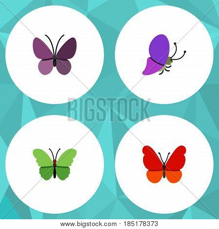 Flat Moth Set Of Milkweed, Violet Wing, Summer Insect And Other Vector Objects. Also Includes Moth, Butterfly, Insect Elements.
