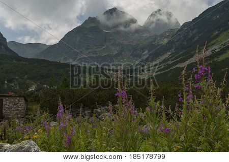 Mountain overgrown with coniferous forest, glade and rest-house toward Maliovitza peak in Rila   mountain, Bulgaria