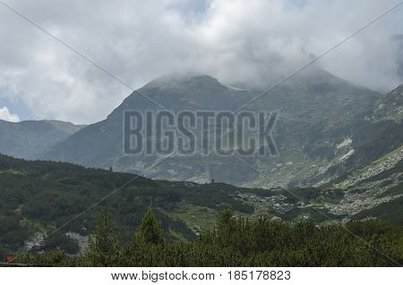 Mountain overgrown with coniferous forest and glade toward Maliovitza peak in Rila mountain,   Bulgaria