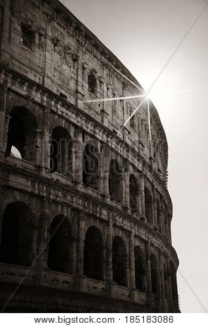 Colosseum in Rome at sunrise in black and white
