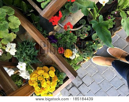 Feet and flowers  With feet and bright green and yellow colors in the picture laid artistic design image - a step away from the beauty.