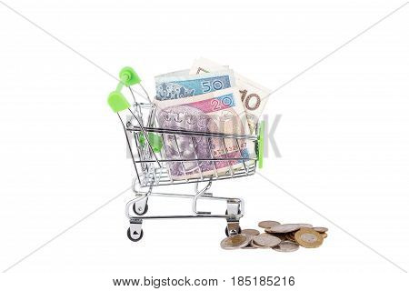 Polish zloty in the shopping pushcart isolated on white