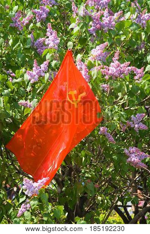 Red flag with the coat of arms of the Soviet Union against the background of lilac flowers.