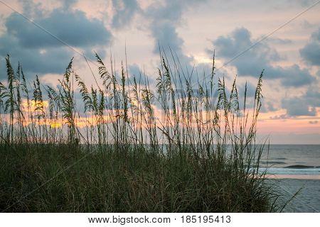 A beach sunrise through the sea oats.