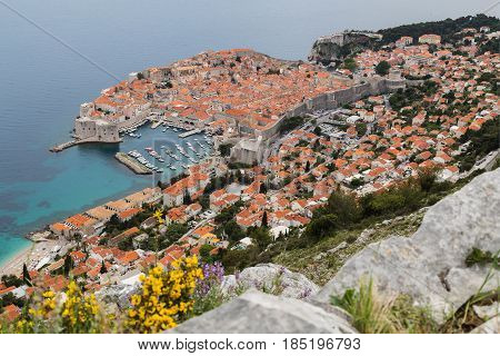 Dubrovnik's old town seen over limestone rocks and colourful wildflowers on Srd Hill in the South Dalmatian region of Croatia.