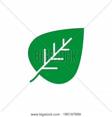 Eco symbol. Leaf icon vector filled flat sign solid colorful pictogram isolated on white logo illustration