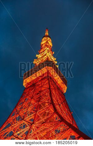 Perspective view of Tokyo Tower illuminated at night. The Tokyo Tower is a telecommunications building and also a panoramic observatory located in Minato district, Tokyo, Japan. Vertical shot.
