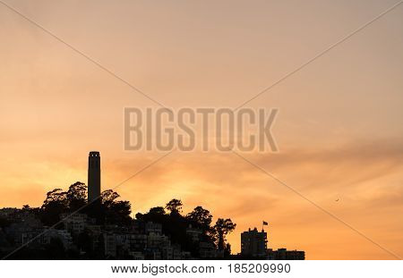 Skyline of the Coit Tower and residential area of San Francisco in California. Sihouette of the construction and the homes against the orange sky of sunset
