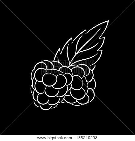 Hand drawn raspberries sketch isolated on black background. Organic food. Vector engraved illustration