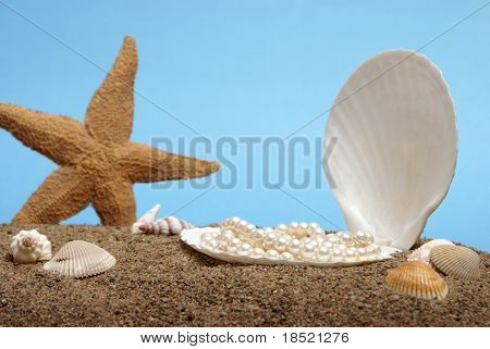 A pearl necklace rest inside a seashell in this beach scene. poster
