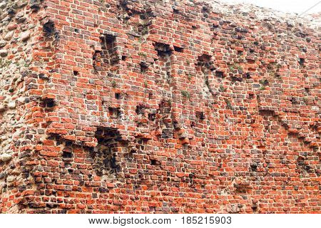 Ruins Of The Old Teutonic Castle In Torun, Poland