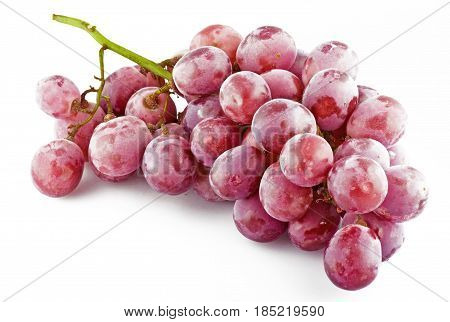 fresh pink grapes with drops close up
