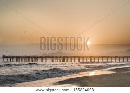 Birds Fly Into The Sunset Skies of Seacliff State Beach. Aptos, Santa Cruz County, California USA.