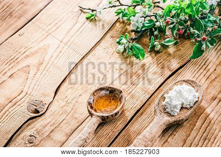 Ricotta or farmers cheese and honey in rustic wooden spoons. Raw wood background with apple and plum blooming twigs. Selective focus