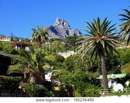 FROM CLIFTON, CAPE TOWN, SOUTH AFRICA, LANDSCAPE, WITH VEGETATION AND HOUSES IN THE FORE GROUND AND TABLE MOUNTAIN NATIONAL PARK IN THE BACK GROUND 22xdr