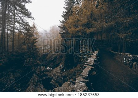 Path at Bruar Falls, Scotland