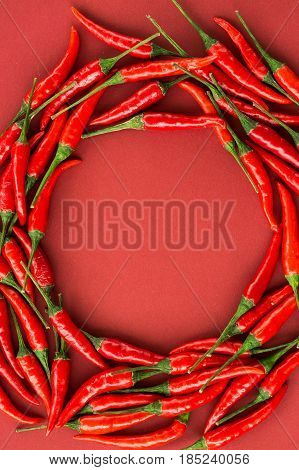 red hot chili peppers, popular spices concept - red hot chili peppers pods in a beautiful round composition of a colorful area on red background, top view, flat lay, free space for text