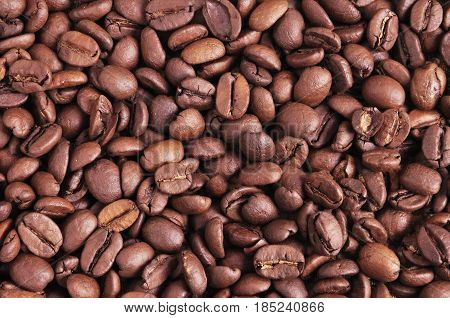 Texture of coffee beans. You can apply for coffee background coffee backdrop coffee wallpaper coffee with text and everything about coffee background concept.
