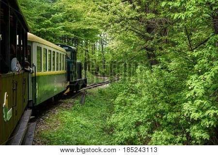 Sightseeing Train in Miskolc, Hungary going through green spring forest
