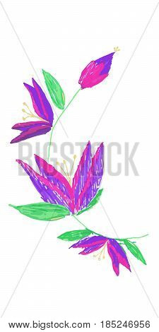 Hand drawn flowers. Children drawn stile card with fantastic flowers. Vector illustration