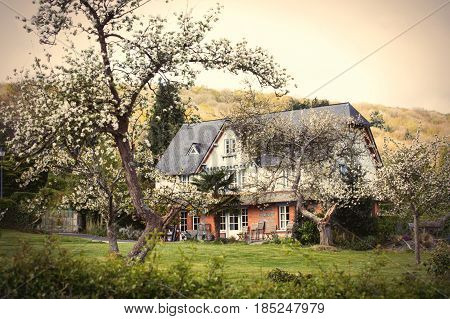 photo of beautiful village house near blooming trees on the wonderful sky and trees background