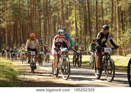 Cyclist Competes In The Elite Mtb Race At Forest
