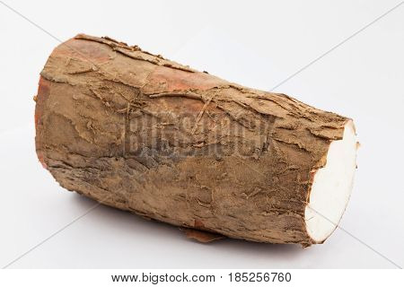 Cassava (Manihot esculenta) isolated in white background