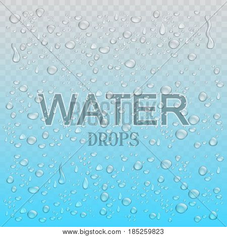 Realistic water drops. Blue  background. Vector illustration EPS10.