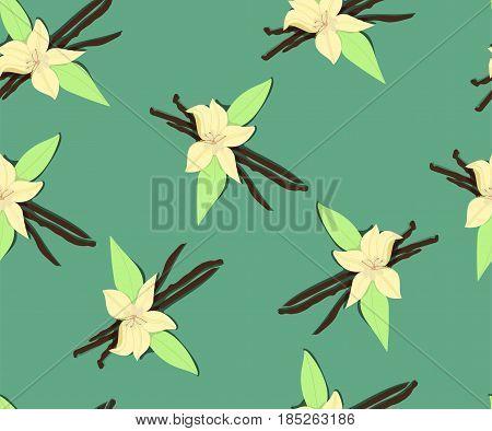 Flowers of vanilla, seamless pattern. Vector hand drawn illustration.