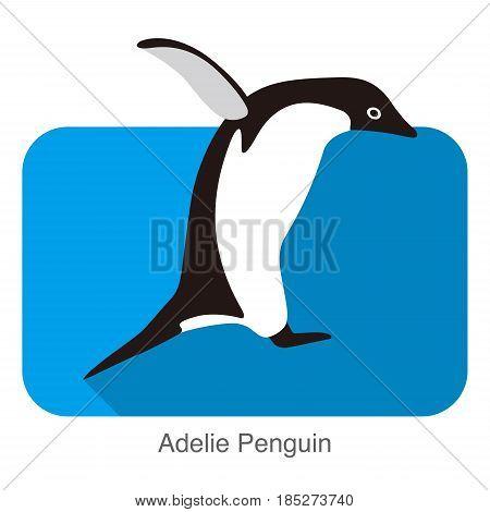 Adelie Penguin Jumping, Penguin Series, Vector Illustration